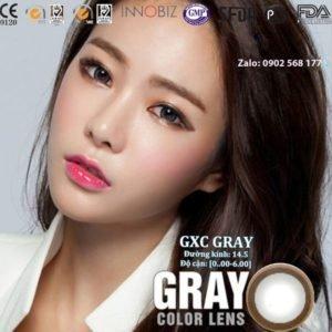 contact lens Gray